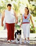 Två kroppar påverkar varandra med lika stora men motrikade krafter, även om den ena har större massa. Bortse från hunden - trekropparsproblemet är ännu inte löst