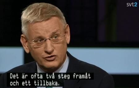 Bildt-Agenda-24 nov-13-1